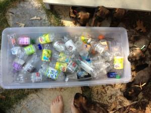 Bottle Pool