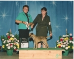 Henri Terrier Sweeps group 4th