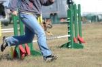 Henri jumping