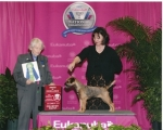 Award of Excellence at Eukanuba 2011